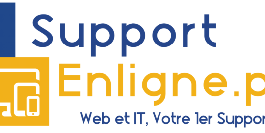 Logo Support Pro Web et IT